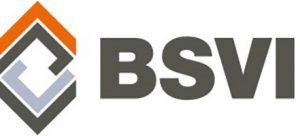 bsvi_logo_redesign